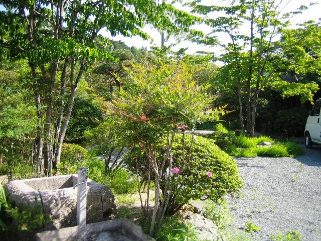 案内者自宅の庭